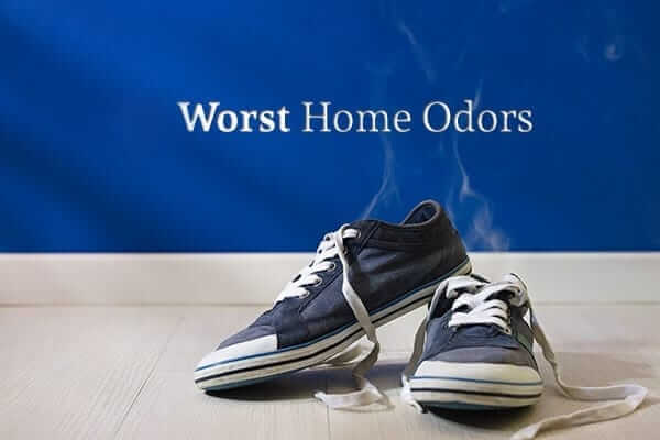 How to Eliminate the 8 Worst Home Odors