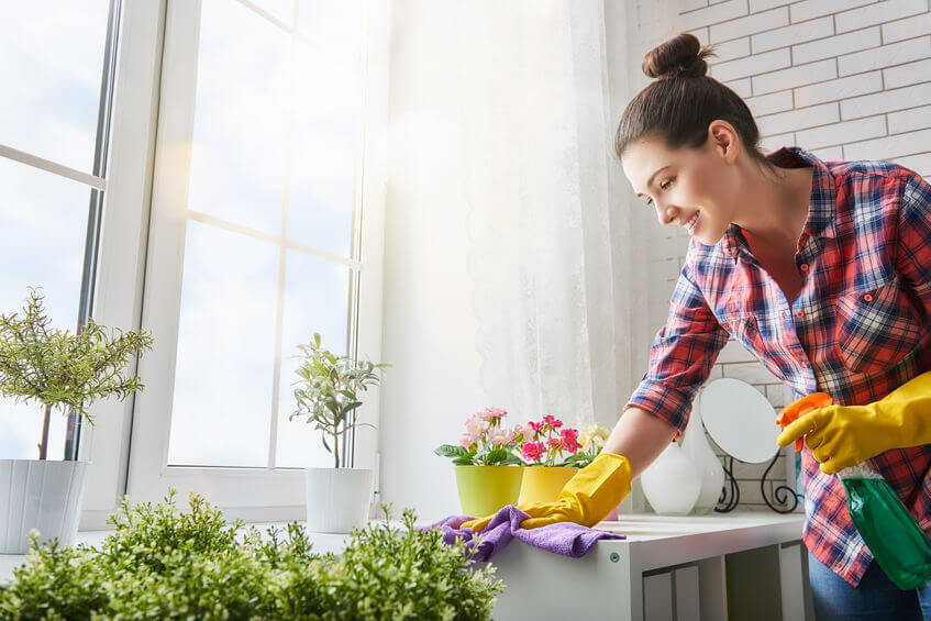 Speed Cleaning: How to Get a Clean House Quick